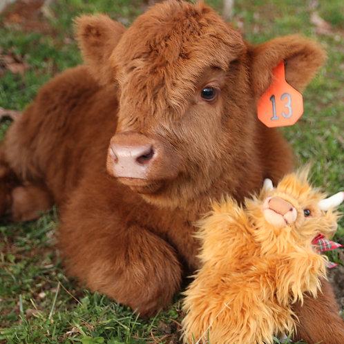 Highland Cow Puppet