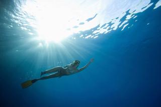 Go Snorkeling!