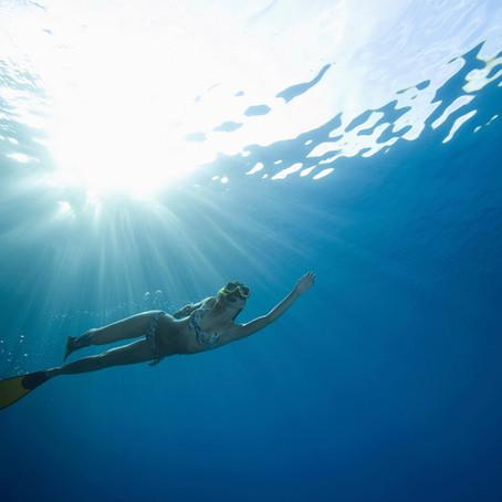 スキューバダイビングの安全性について