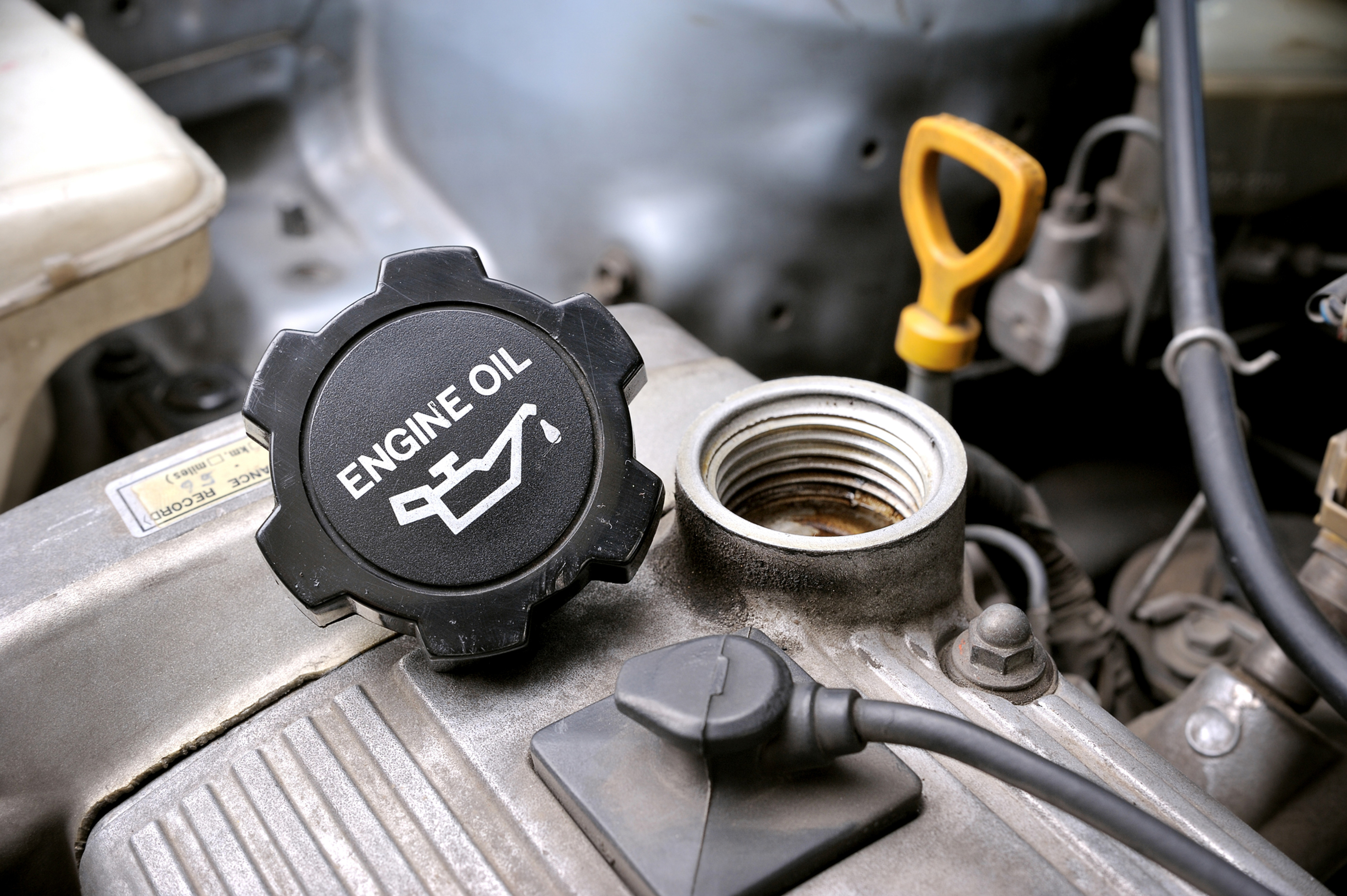 Oil & Filter Service-add $20 Synthetic