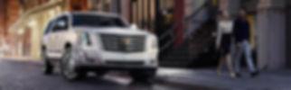 ESC '18 White TopPic.jpg