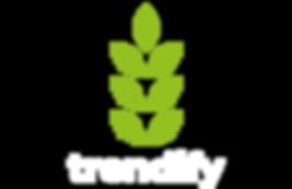 logo trendifyportada-01.png