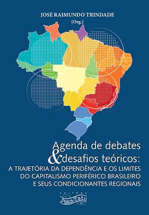 Agenda de debates e desafios teóricos