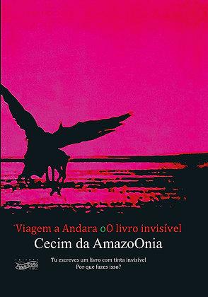 Viagem a Andara oO livro invisível