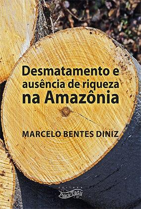 Desmatamento e ausência  de riqueza na Amazônia