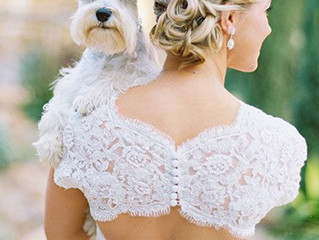 'I Do' but not without my dog