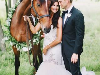 Horses in your wedding 101