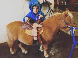 Oz Pony Lesson 2