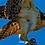 Thumbnail: Landing Osprey
