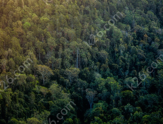 Hinterland mountainside