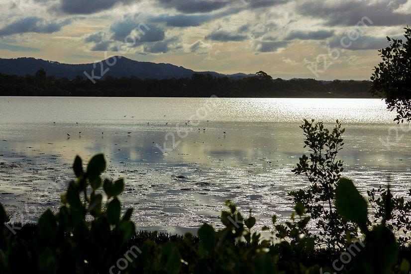 Coombabah Lake