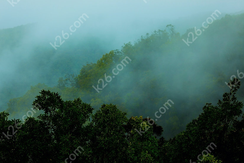 Misty mountains of the Gold Coast Hinterland