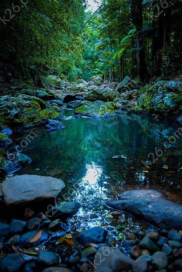 Gorge Falls trek