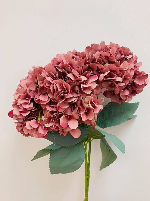 Hydrangea Rose Pink Ombre