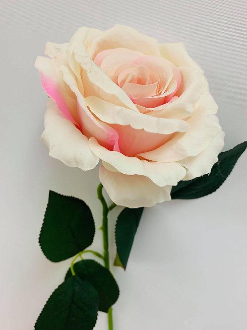 Ellie Pink Rose