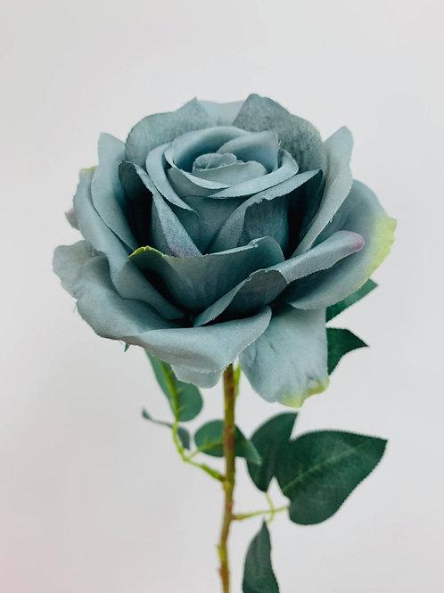 Aurora Grey