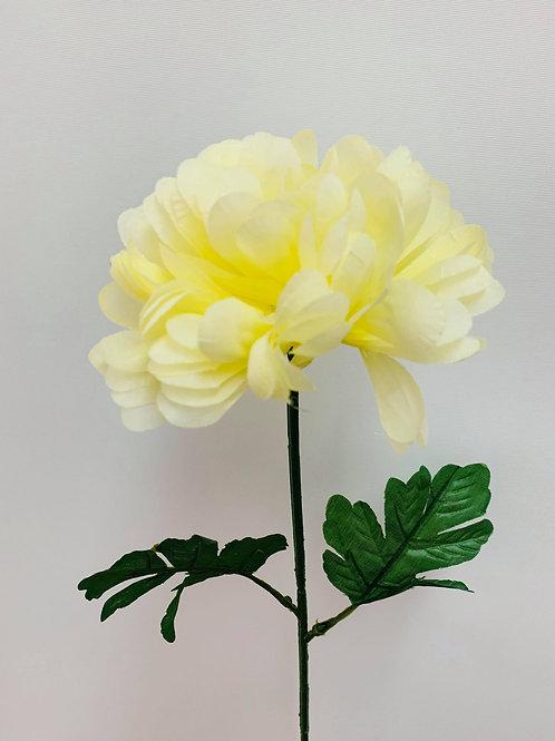 Amari Yellow