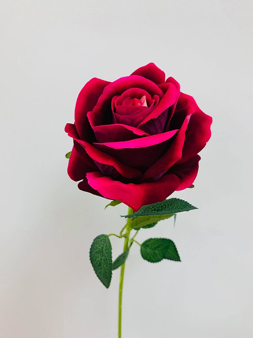 Sofia Pink Rose