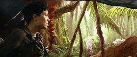 Jungle_Rouge B.png