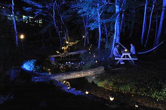 栃木県フィンランドの森の夜景