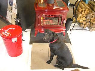 INVICTA薪ストーブと犬