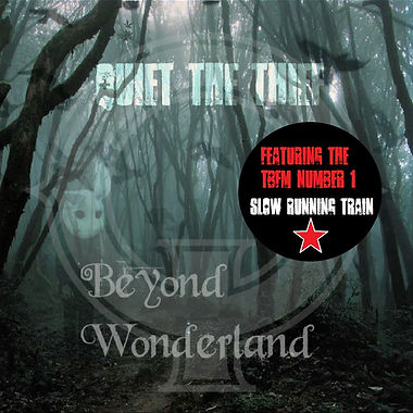 beyond wonderland stickered.jpg