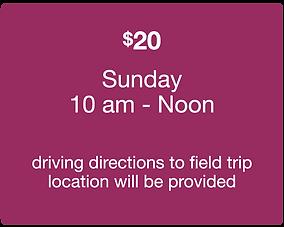 Morning Field Trips  March 4