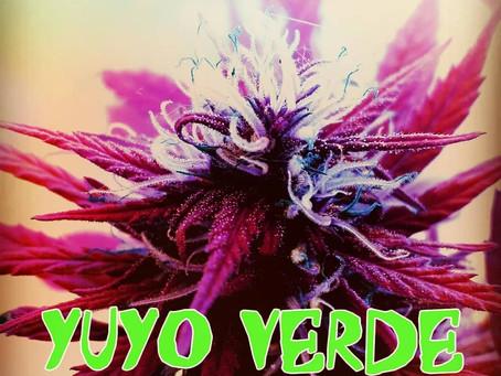 New Single. OSKART – YUYO VERDE ( ORIHGINAL RECORDS 2021 )