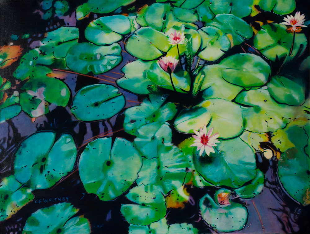 Lilies at the Botanical Park