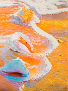 Sea Foam and 3 Conch