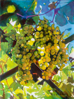 Grapes #3