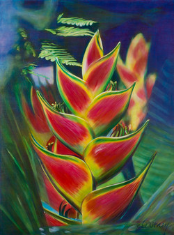 Heliconia and Fern