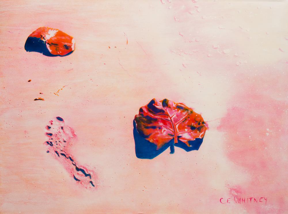 Footprints on 7 Mile Beach