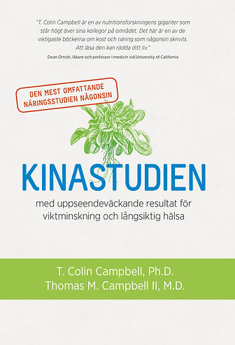 Kinastudien_cover_3.5.jpg