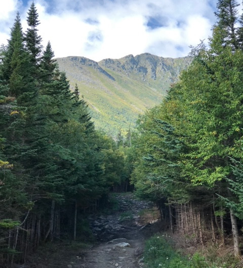 A HIKE IN THE WOODS – LIFE CHANGING