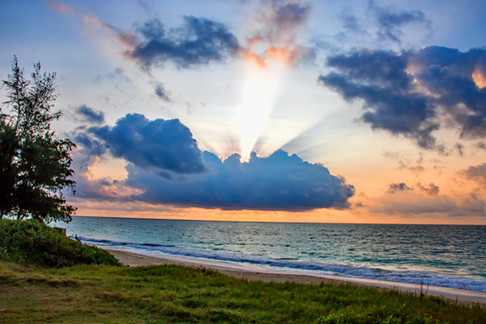 Gorgeous sunrise at beach with grassy foreground