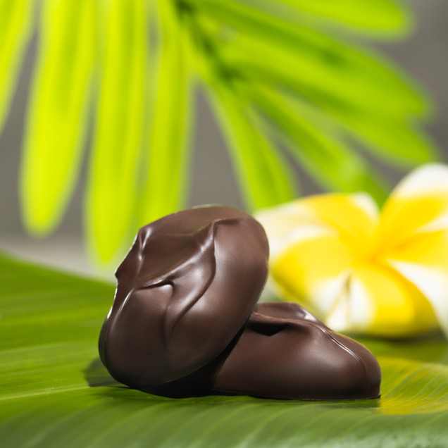 Two dark chocolates on green leaf with plumeria in background