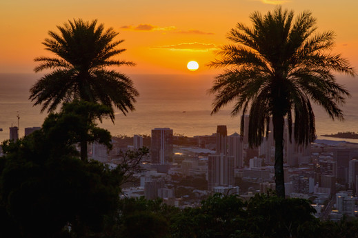 Gorgeous sunset, coconut trees, and cityscape