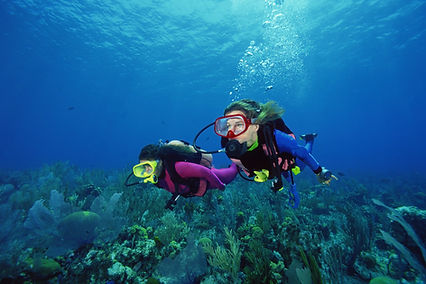 Two scuba divers swimming through water over coral