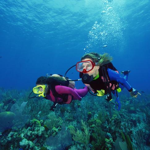 Dive your way around the world