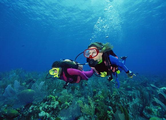 Plongée à la Réserve Cousteau FORMATION