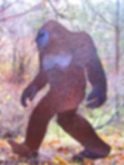 Battle of the Little Bigfoot .jpg