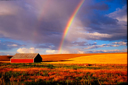 Rainbow Barn by Mary Weathers