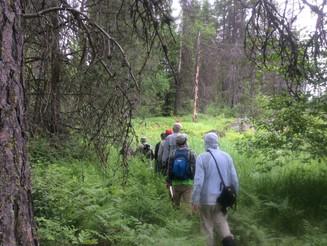 Avista's Sacheen Springs:  INLC's Newest Conservation Success
