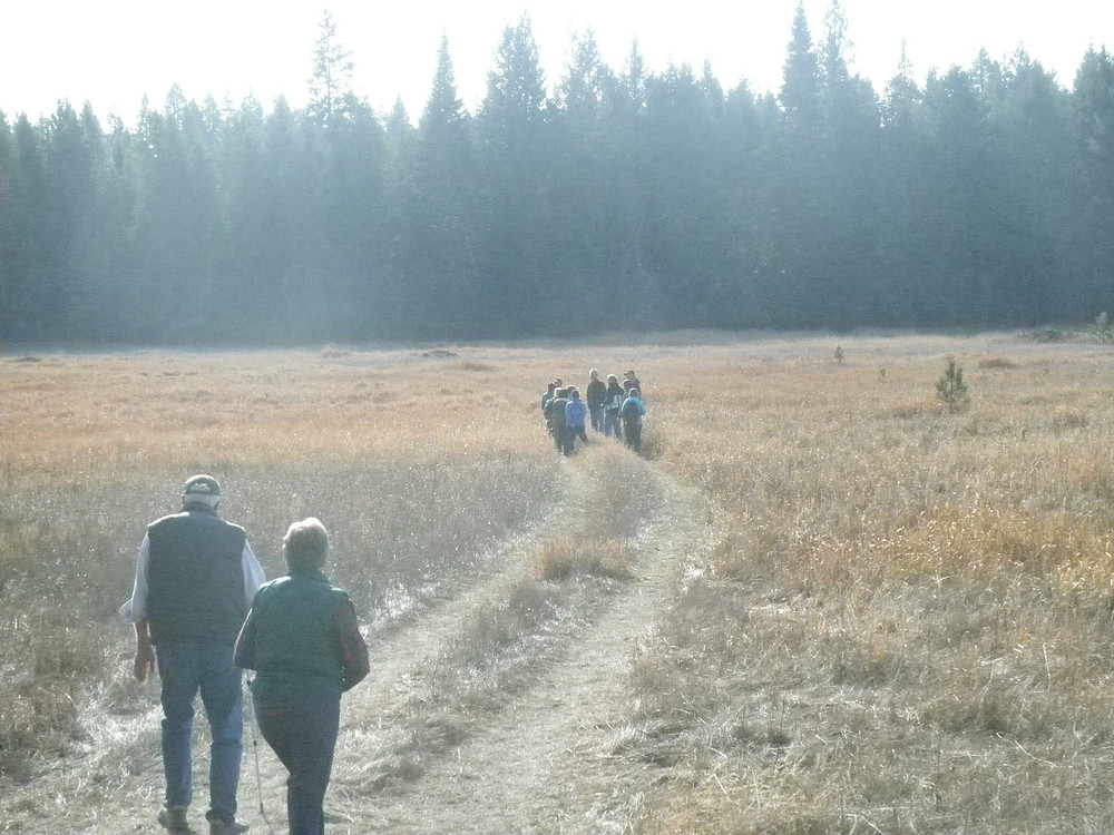 Crossing the meadow at the Carder/Hanson easement