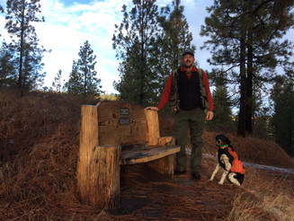 Sprow Family Preserve: A Victory for Wildlife Habitat