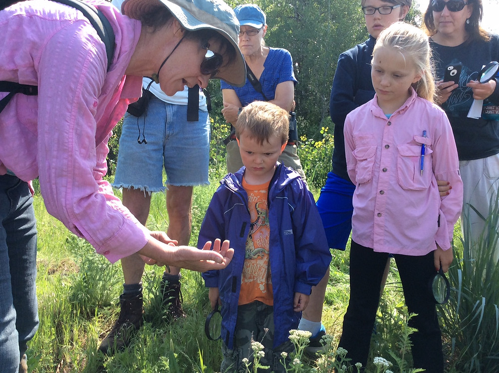Helping children learn about nature improves their physical, mental, and emotional health