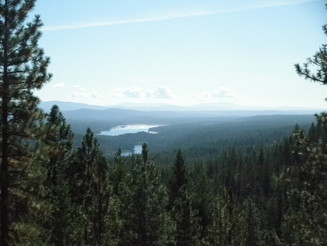 Baker Lake easement preserves a working forest