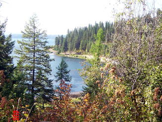 Protecting Lake Coeur d'Alene forest land