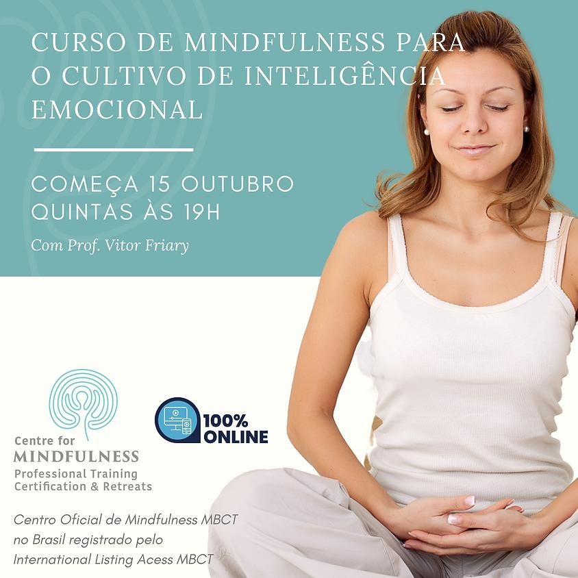 Curso de Mindfulness para o Cultivo de Inteligência Emocional (Edição 105)